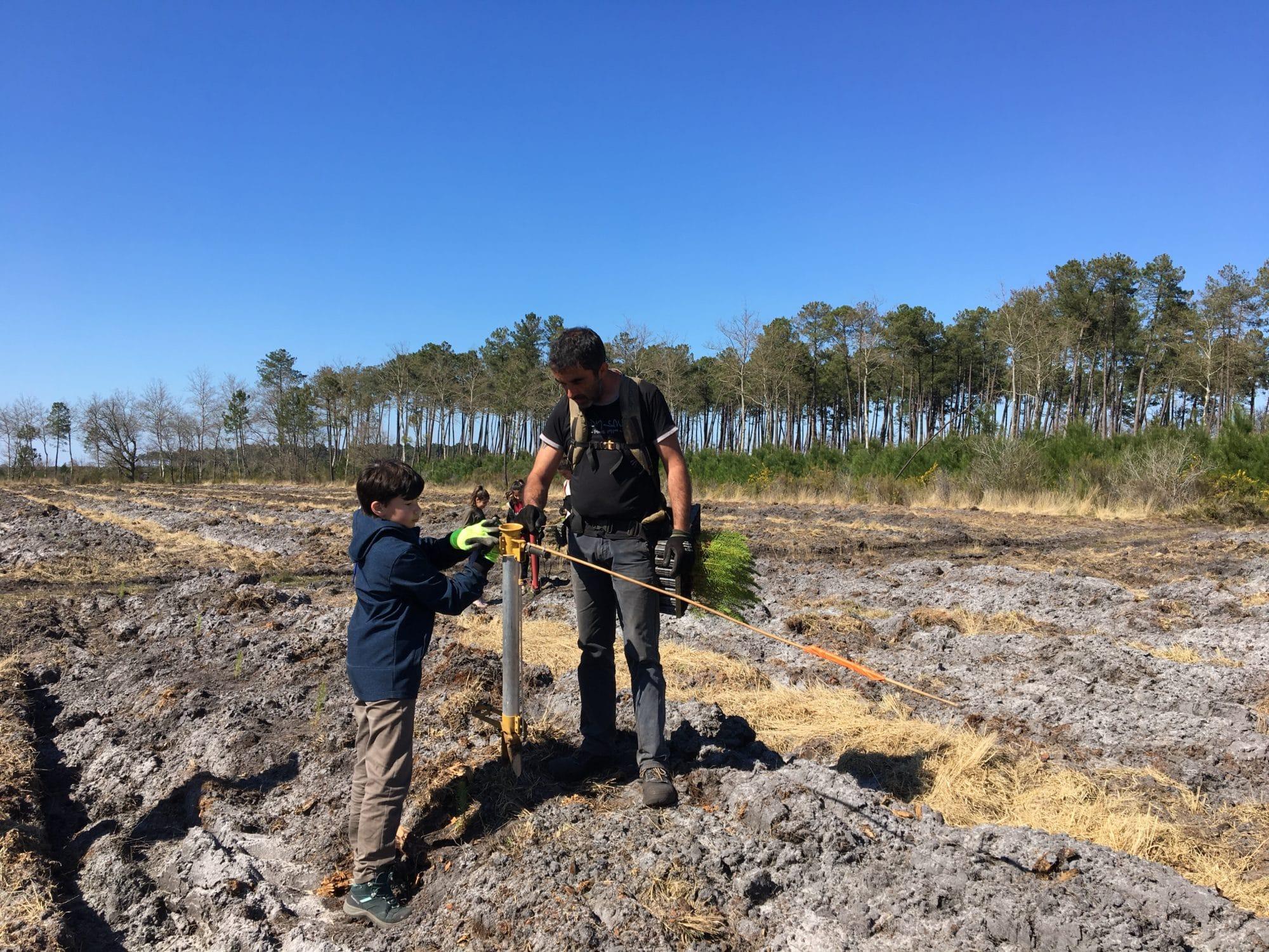 Plantation avec Alliance Forêts Bois