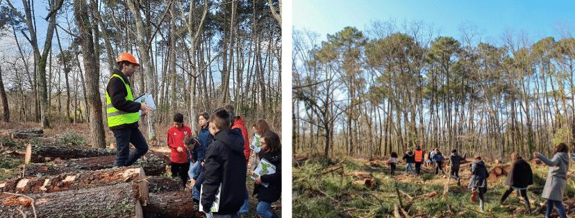 Journée exploitation avec Alliance Forêts Bois