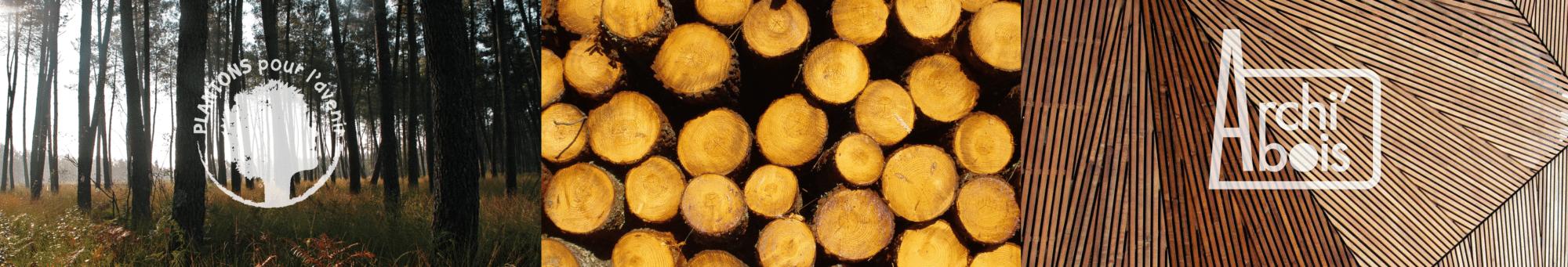 Montage photo d'une plantation de résineux, d'une pile de bois et d'une architecture en bois. Logos de Plantons pour l'avenir et Archi'bois également.